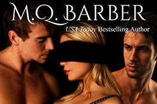 Review: Playing The Game by M.Q. Barber