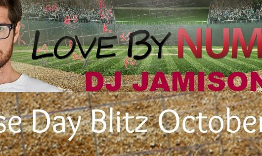 Release Day Blitz, Giveaway & Review: Love By Number by DJ Jamison